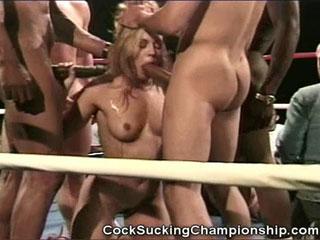 American cocksucking championship 04 scene 2 10